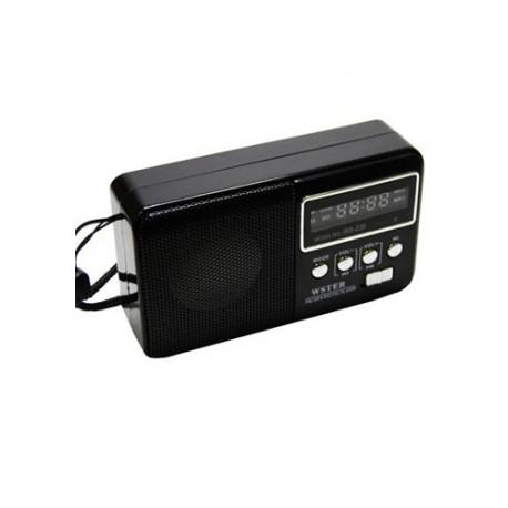 رادیو FM و اسپیکر - مدل 239